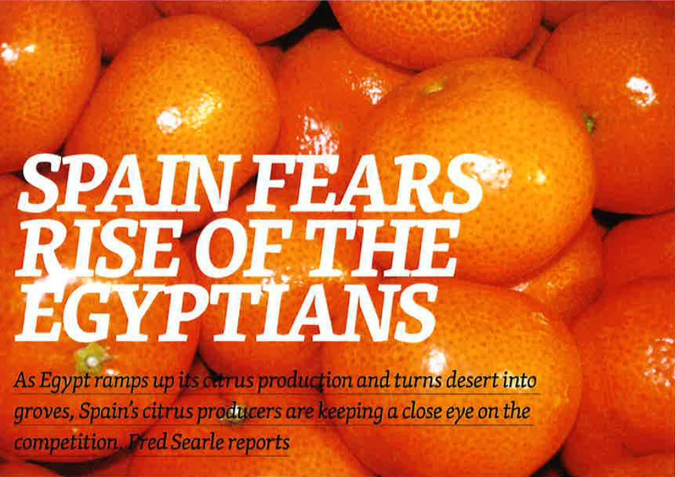 SPAIN FEARS RISE OF THE EGYPTIANS. As Egypt ramps up its citrus production and turns desert into groves, Spain's citrus producers are keeping a close eye on the competition.