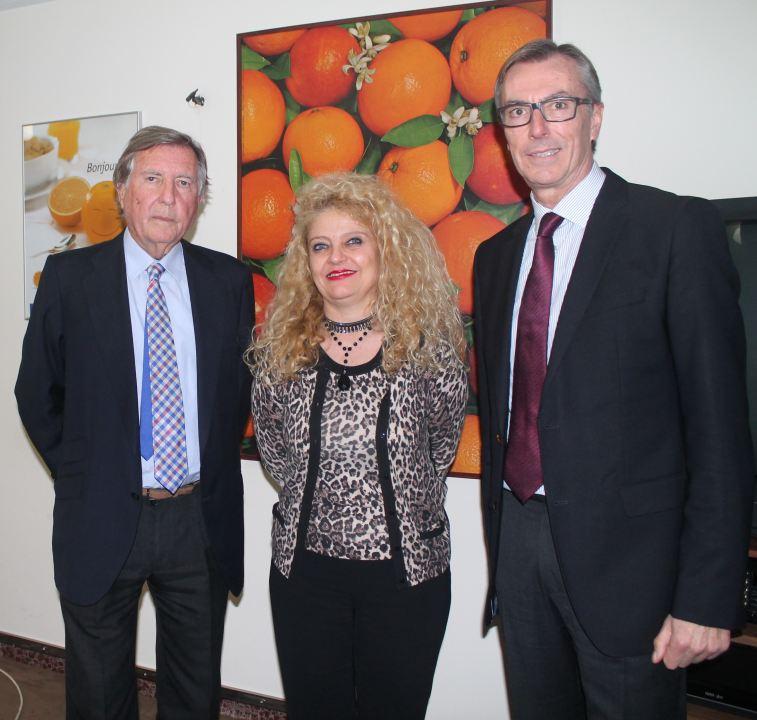 Vicente Bordils repite como presidente del CGC