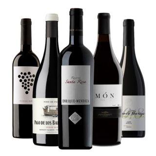 Un homenatge per a la nostra vinoteca privada