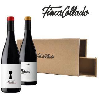 Lote wine cam Flor Malvés y Delit