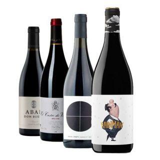 Lote Wine Cam ESPECIAL MENCÍA