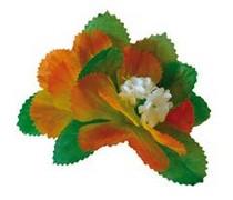 Clip flor Haway