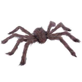 Araña peluda marrón