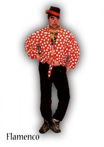 imagen Camisa Flamenco