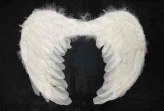 Alas angel pequeñas