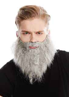Barba hipster grisacea