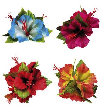 Clip flores hibiscus