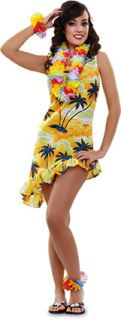 imagen Disfraz de hawaiana