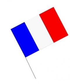Bandera palo Francia