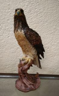 Águila tronco