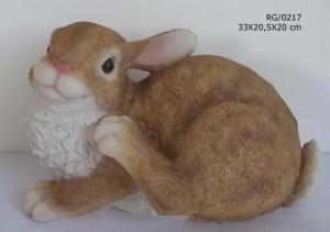 Conejo sentado