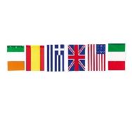 Bandera internacional 50 mts