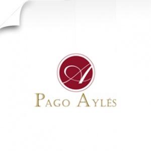 imagen Bodegas PAGO AYLÉS