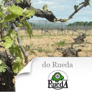 imagen Do Rueda