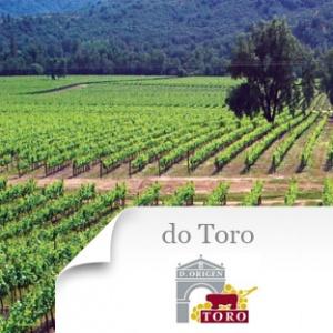 imagen Do Toro