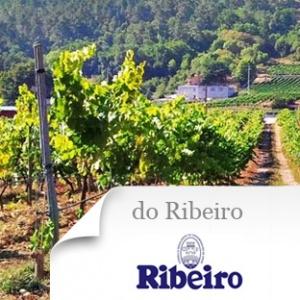 imagen Do Ribeiro