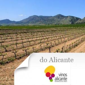imagen Do Alicante